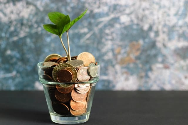 Coins saved in a clear flower pot with a mall plant growing from them.